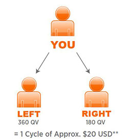 vemma-compensation-plan-cycle-commission
