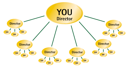 gnld-director-position
